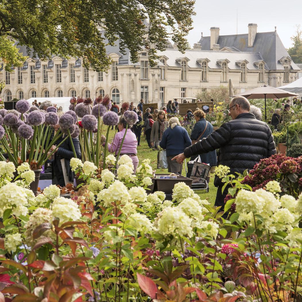 Les Journées des Plantes de Chantilly de mai annulées